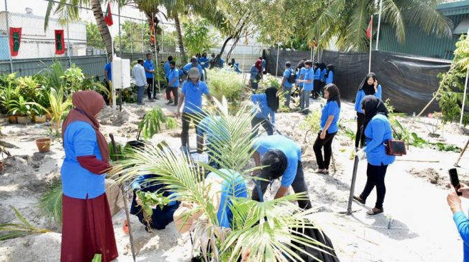 Inauguration Of STELCO Wide Tree Planting Event